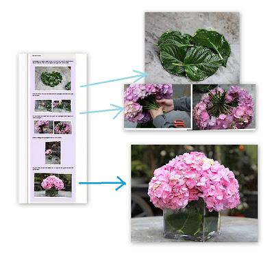 Como Fazer um Arranjo de Flores Bonito Usando Hortênsias