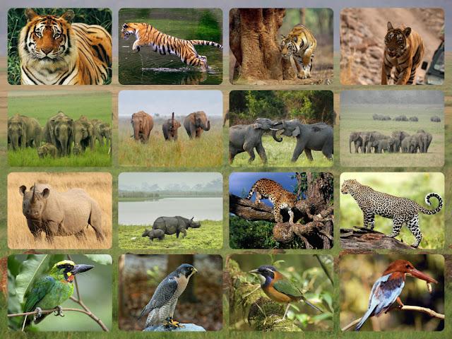 Aryavrit_travels-Agence-de-voyage-en-Inde