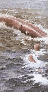 Luchando con el calamar gigante