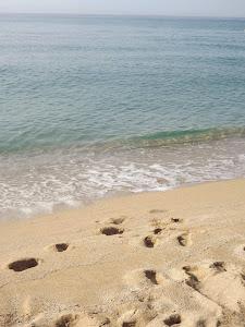 Disfrutamos de bellos paisajes marinos...