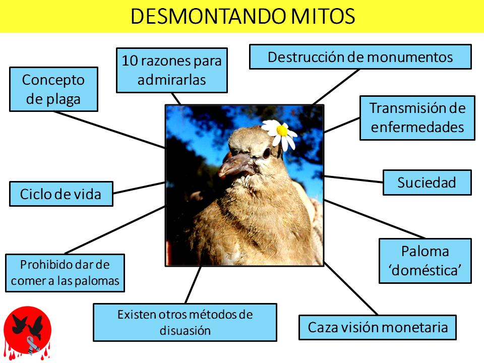 Acabemos con el maltrato a las palomas: Artículos relacionados