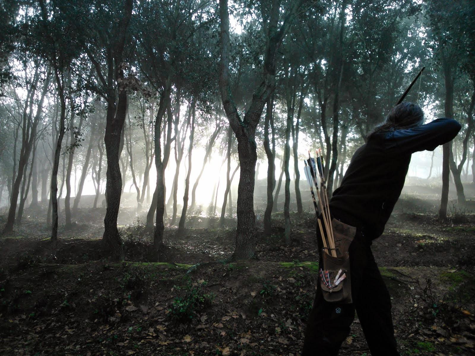 Bosc misteriós