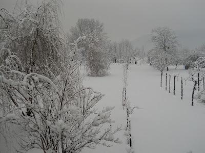 neve gennaio