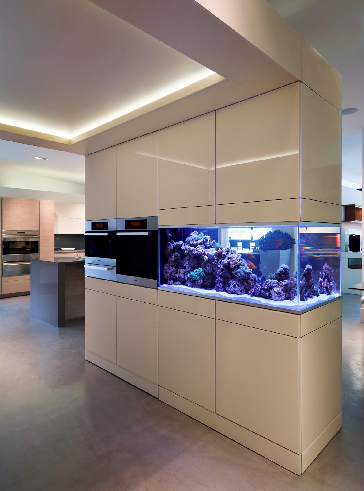 Aquafront Aquariums Akhil Gordon Beckford Lisa Melvin Design