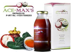 Ace Maxs Alami