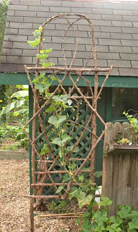 Trellis Ideas For Gardens Jim longs garden bentwood trellises for your garden workwithnaturefo