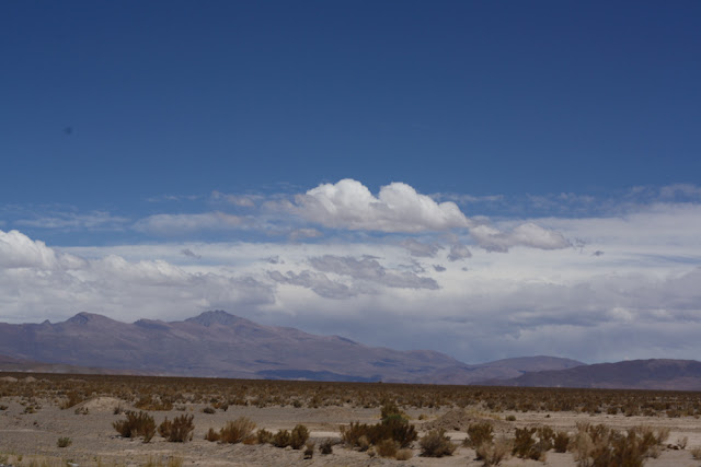 desert northwest argentina