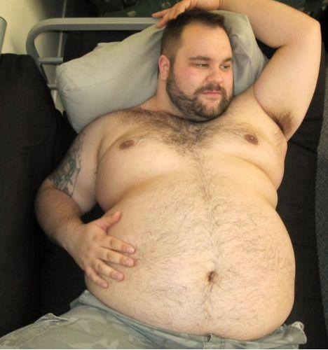 Where can Bearded chubby bears