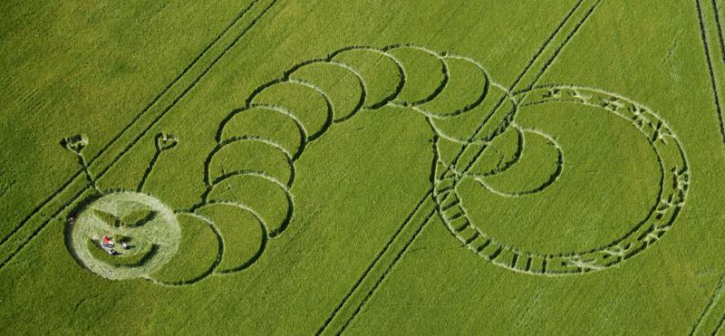 Risultati immagini per crop circle aliens
