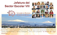 Blog del Sector Escolar VIII (ingresa)