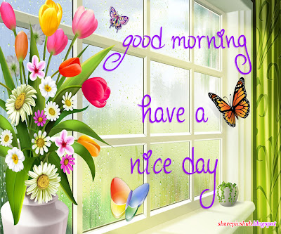 Nice day good morning greeting card for facebook good morning pics