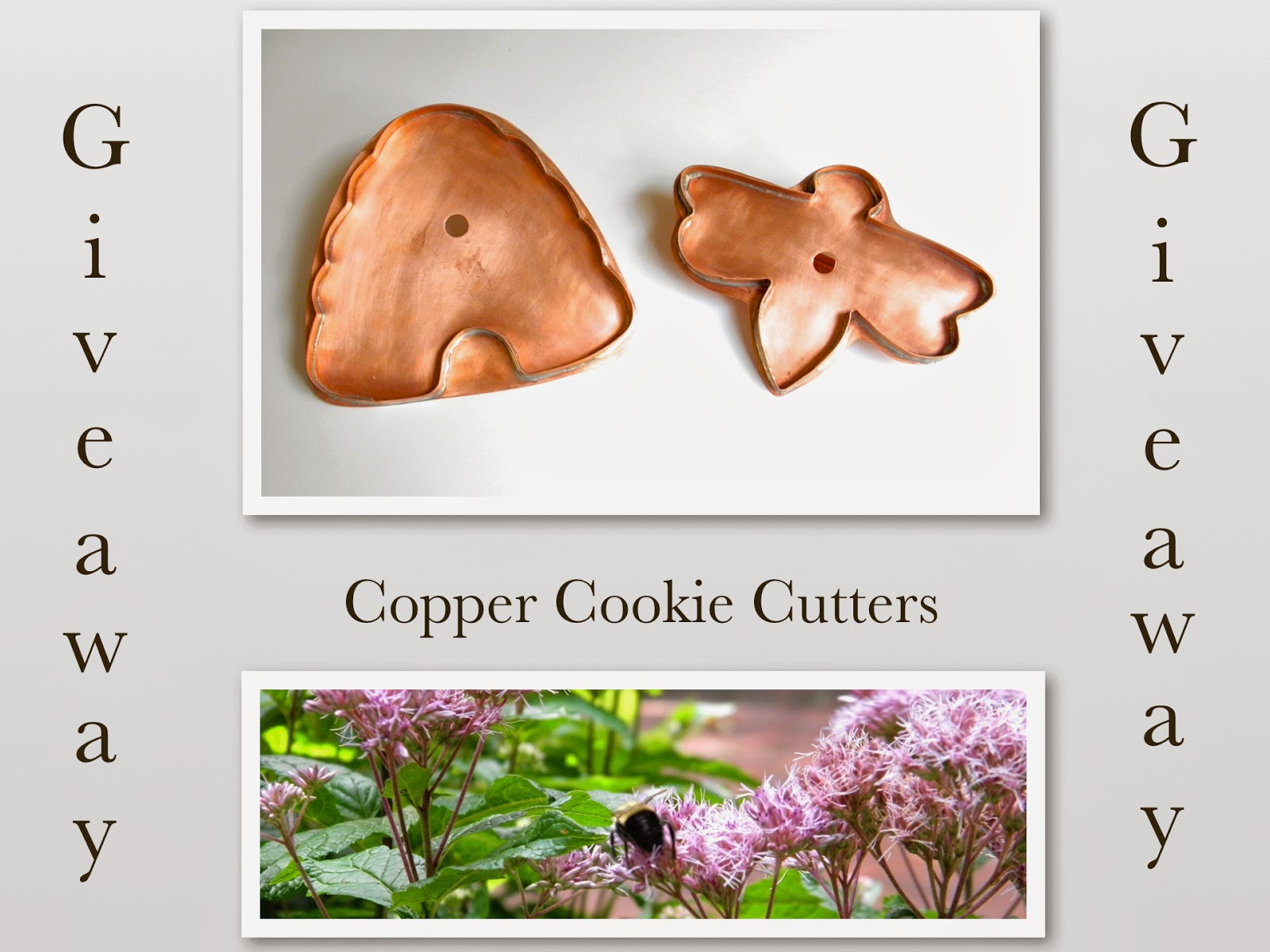 good things by david cookie cutter giveaway