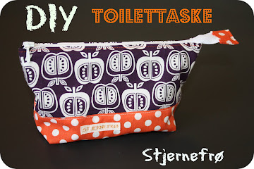 DIY Toilettaske