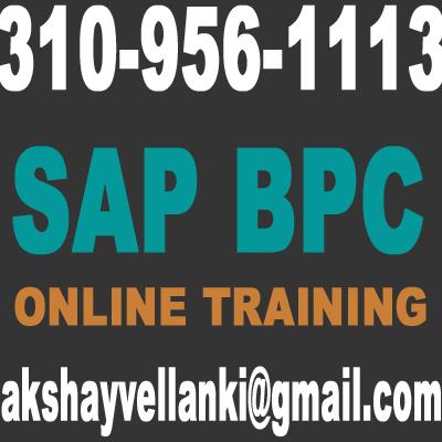 Sap bpc consolidation resume