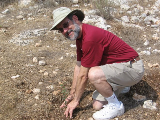 Planting a tree in Israel