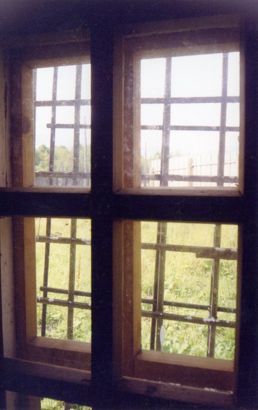 У соседки в окне 24 фотография