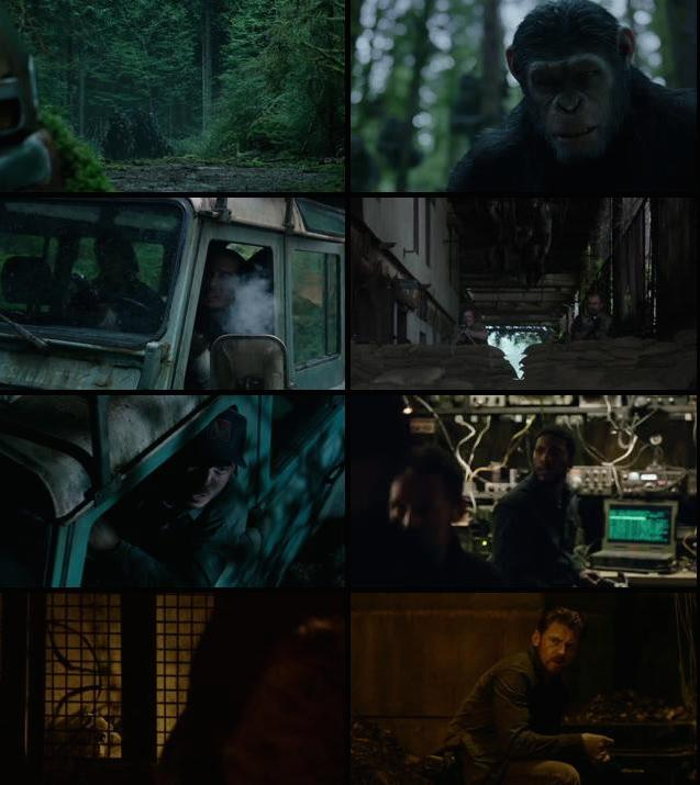 Dawn of the Planet of the Apes 2014 Hindi Dual Audio BluRay 480p