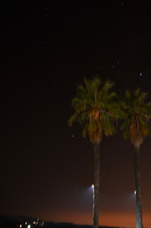 Val Du Charron palm trees at night