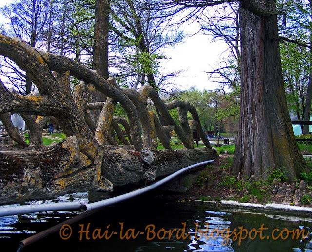pod parc romanescu craiova