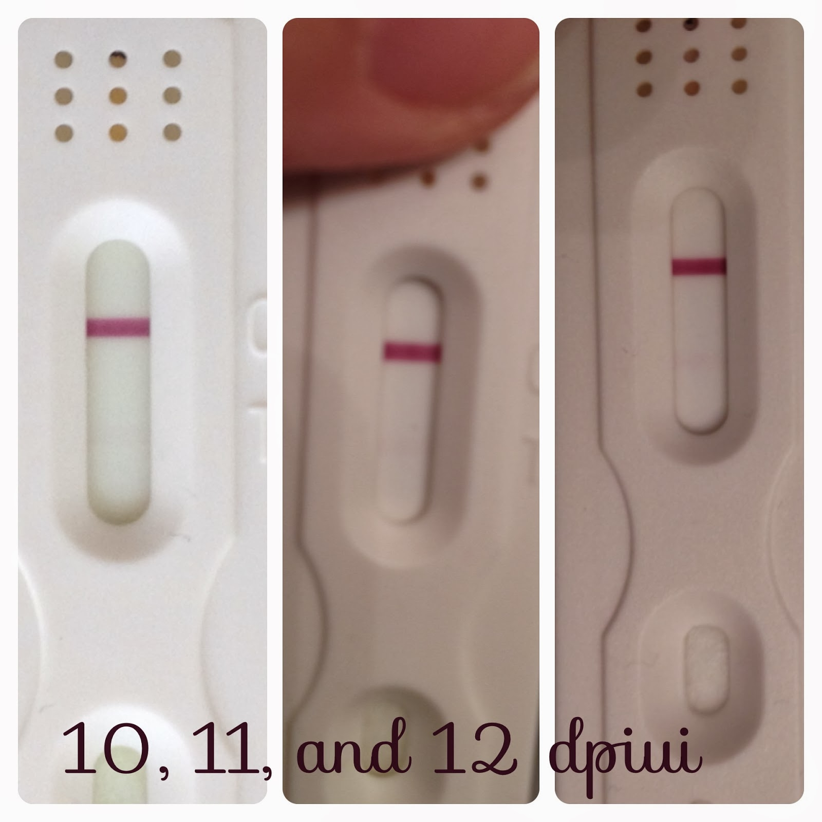 12 Days After Iui