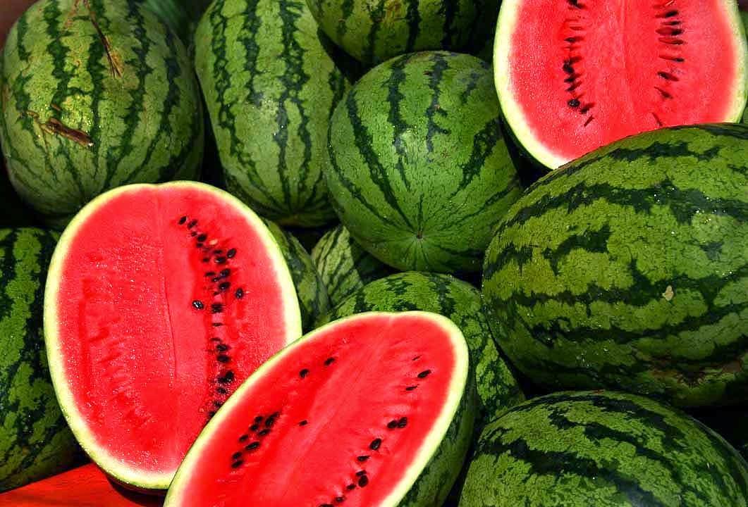 Semangka Mengandung Antioksidan Yang Tinggi