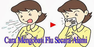 Cara Mengobati Flu