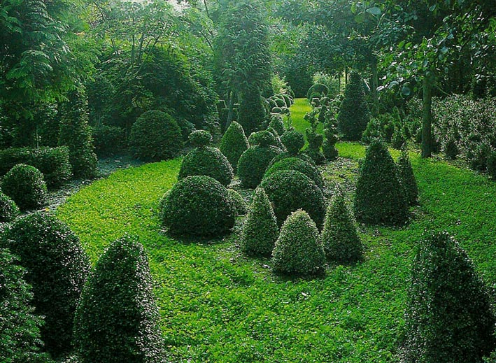 Arte y jardiner a arte topiario jardiner a ornamental - Arboles para jardines pequenos ...