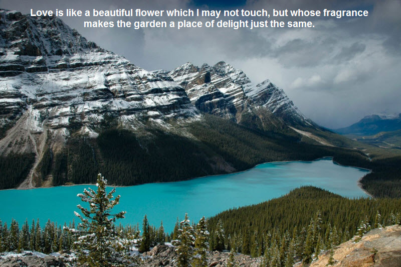 Amazing Nature Wallpapers with Beautiful Quotes.. | Photo Quotes