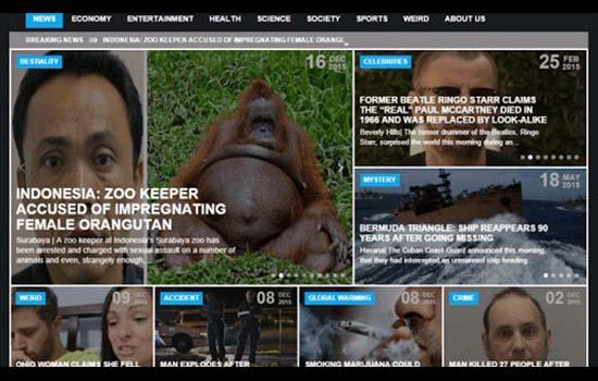 Kisah Sebenar Orang Utan Bunting Diperkosa Pekerja Zoo