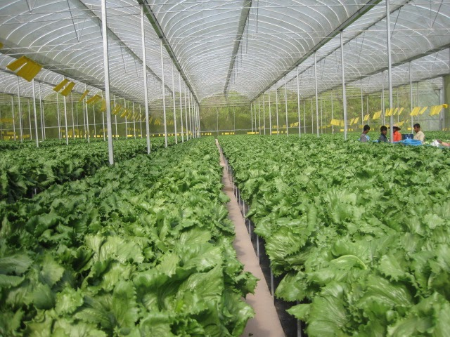 technology for sustainable agriculture Touching on the technology of sustainable farming on the 25th may 2017,  leaf will hold its second integrated farm management (ifm) conference at  fera.
