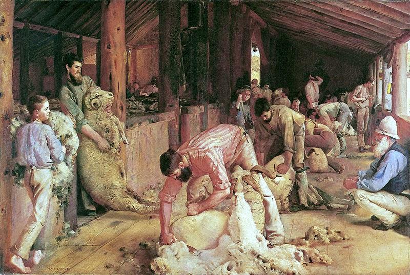 shearing the rams 1890