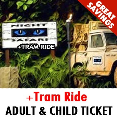 Singapore Night Safari Admission + Tram ride