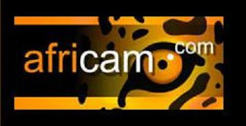 Africam | Live Safari Cameras