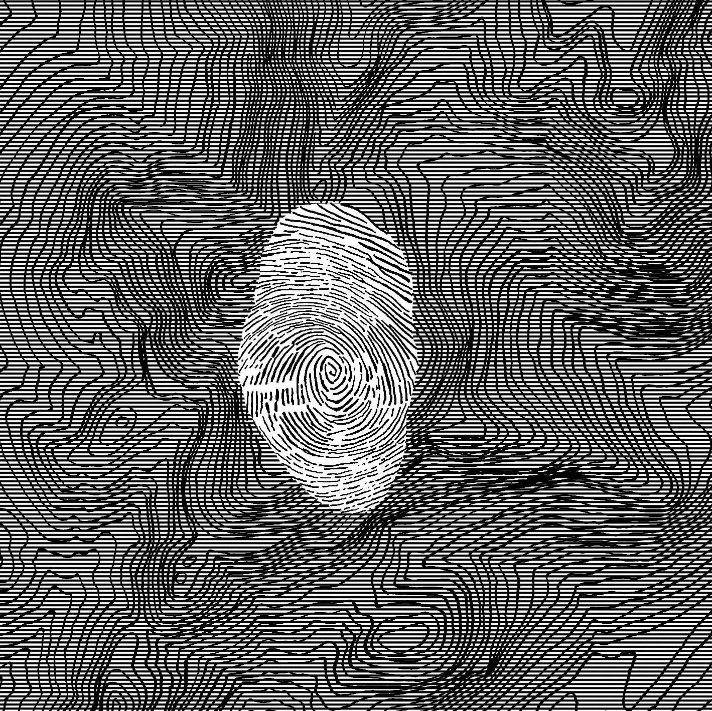 """Strom Noir / Micromelancolié: 49°05'19,3""""N 22°34'04,0'E'"""
