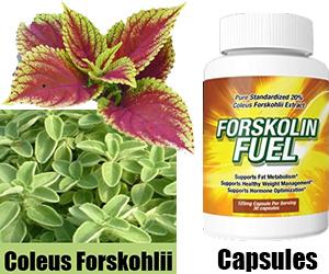 Forskolin 125 mg walmart black