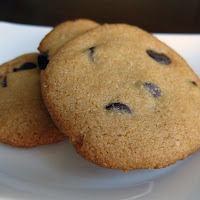 Delicious Paleo Chocolate Chip Cookie Recipe