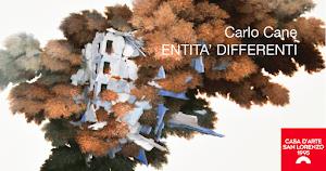 ENTITA' DIFFERENTI personale di Carlo Cane