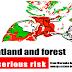 Sekelompok Warga Papua Tolak Merauke Integrated Food and Energy Estate (MIFEE) Lewat Film Pendek