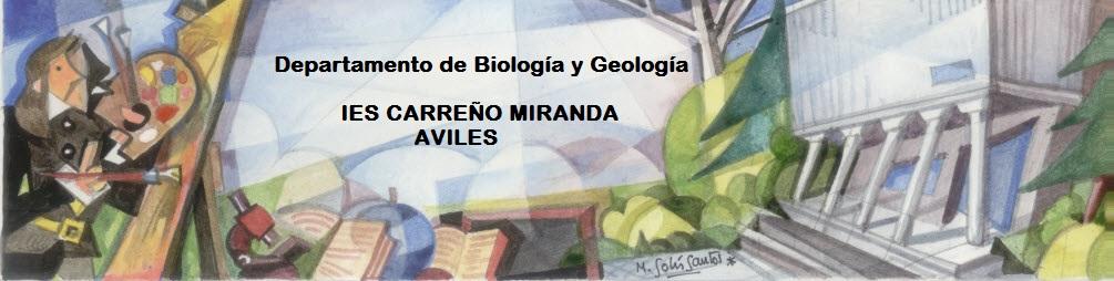 Departamento de Biología y Geología -  IES Carreño Miranda - Avilés