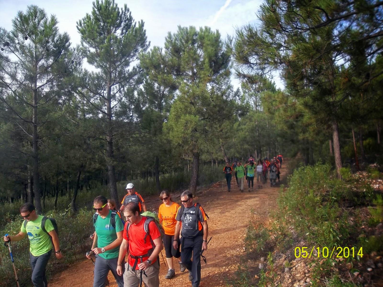 fotos de la ruta