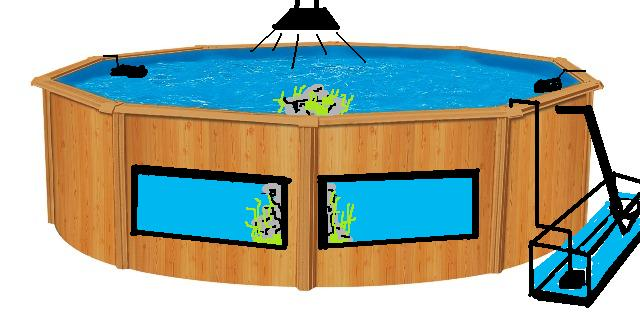 bacmarin fabriquer un aquarium avec une piscine. Black Bedroom Furniture Sets. Home Design Ideas