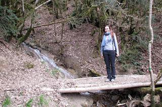 Puente en camino de Ochagavia