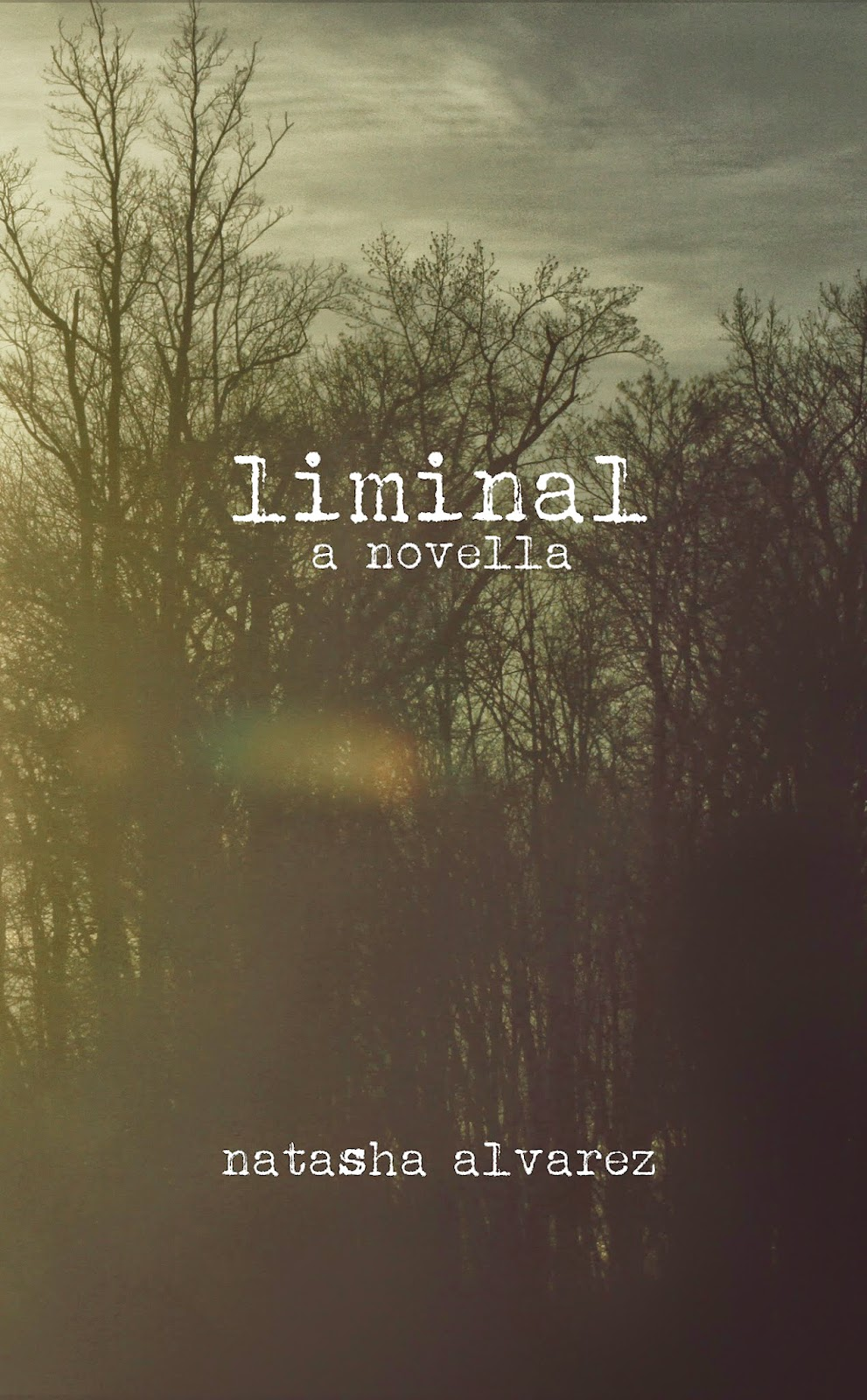 Publications Bg04 Liminal A Novella By Natasha Alvarez 2014 Liminal Is A  Novella That Grabs You