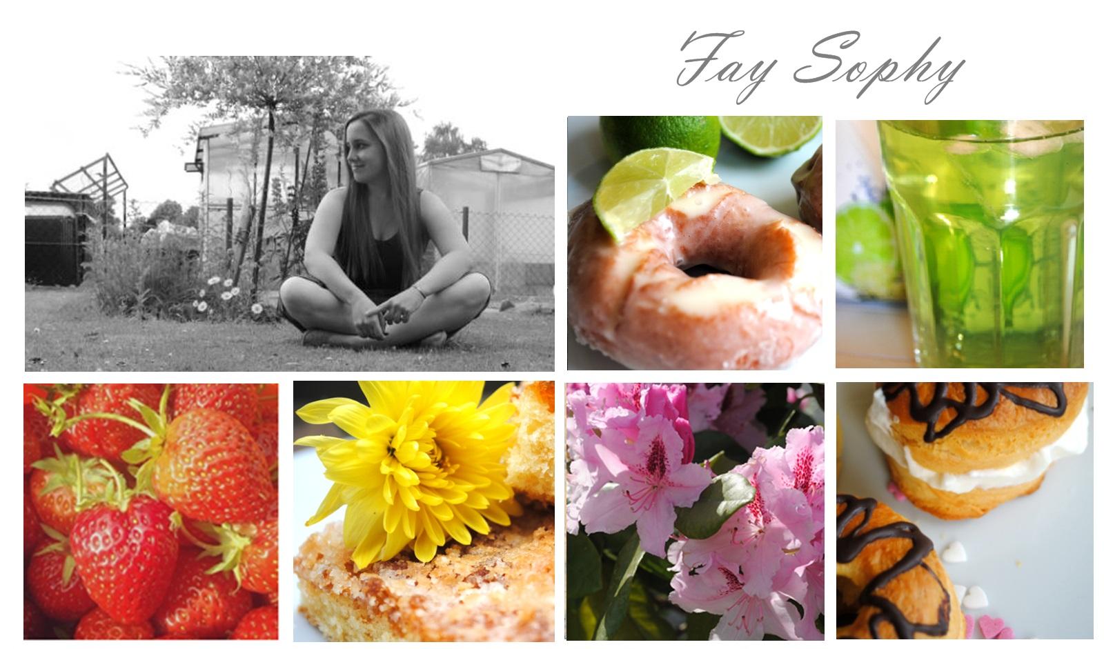 http://faysophy.blogspot.de/