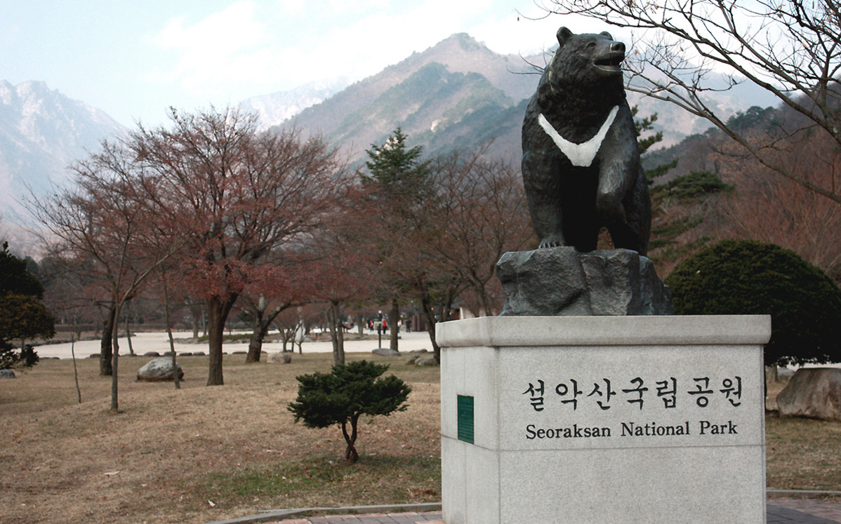 Paket Tour Korea Selatan 5 Hari 3 Malam
