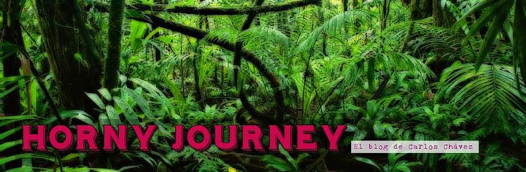 Horny Journey