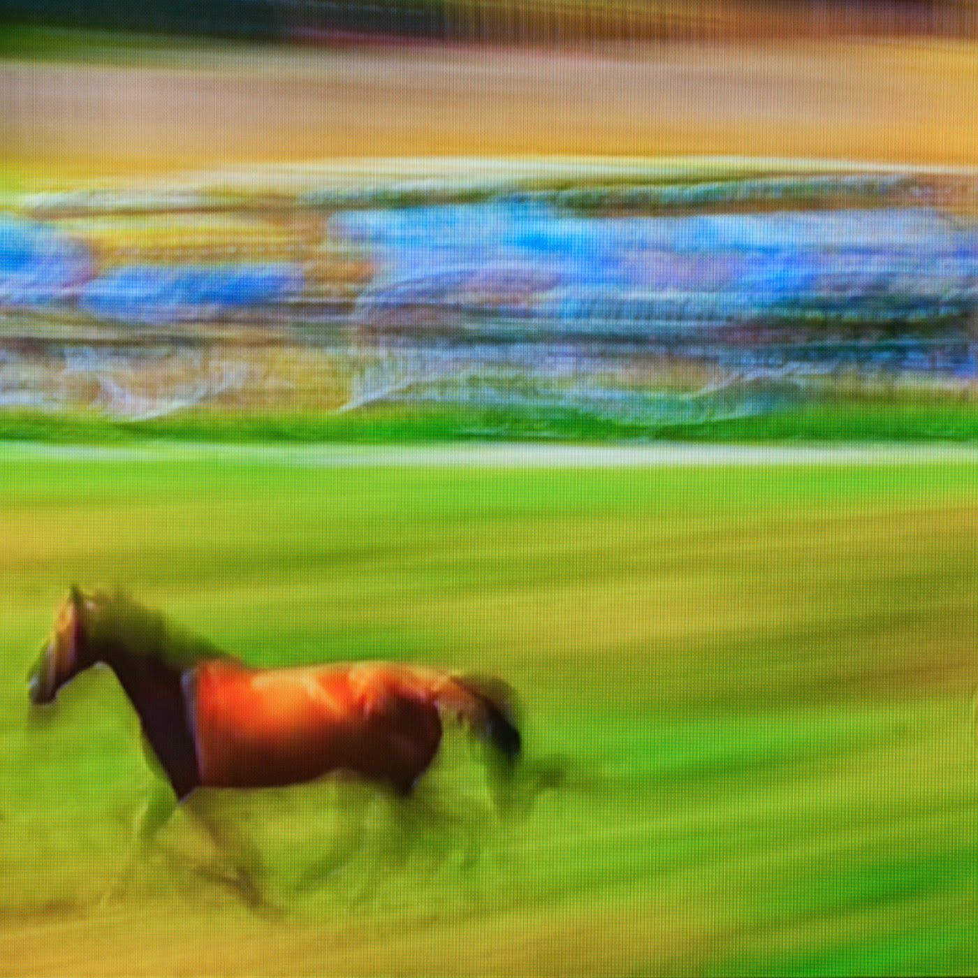 le tour de france, motion blur, blur, abstract, abstraction, tim macauley, photographic art, you won't see this at MoMA, appropriation, found imagery, le tour 2014, tv footage, portrait, timothy Macauley, the light monkey collective, grand cycling tour, horses