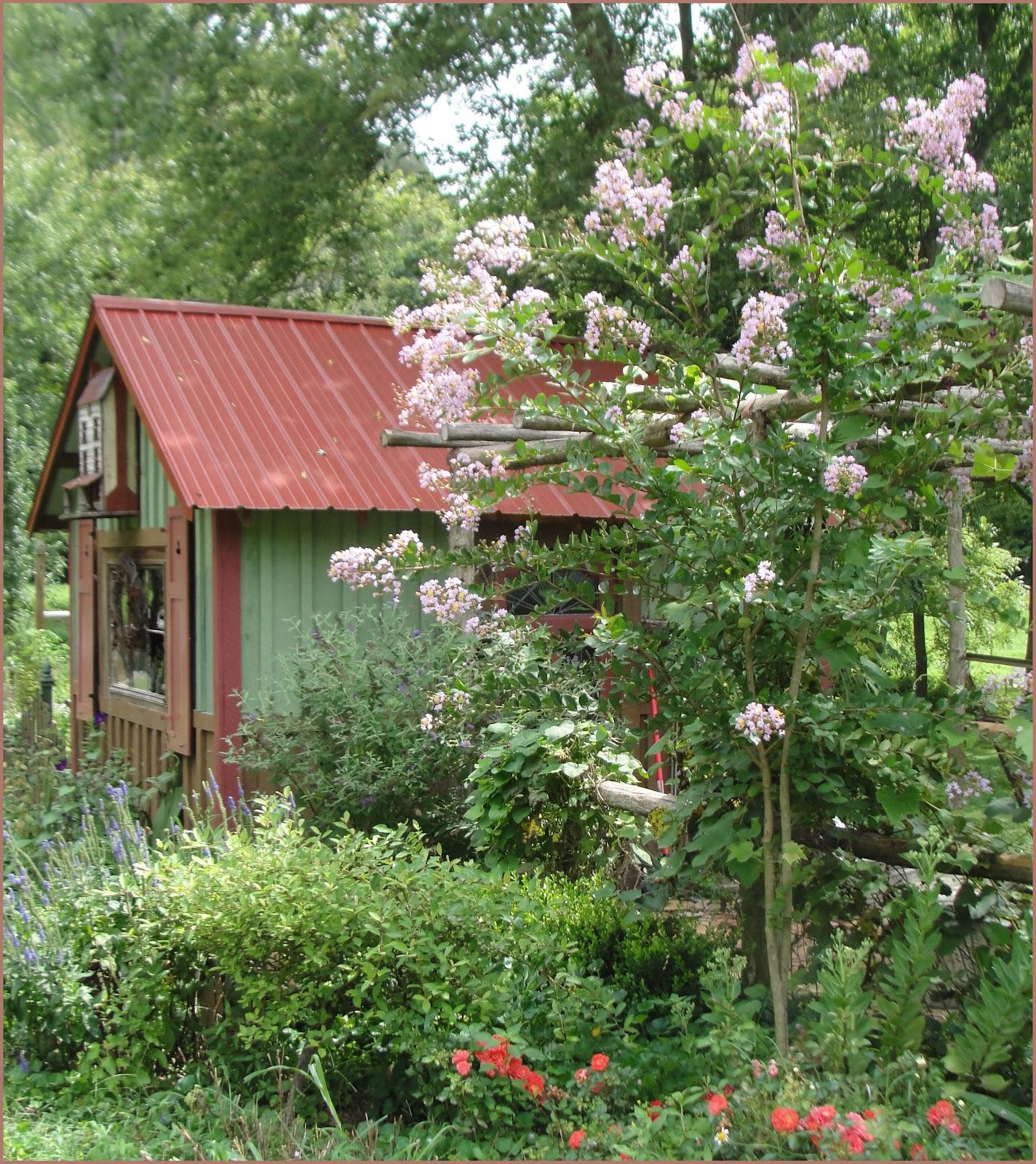 Hopalong hollow gazette potting shed and garden wrap up for Potting shed