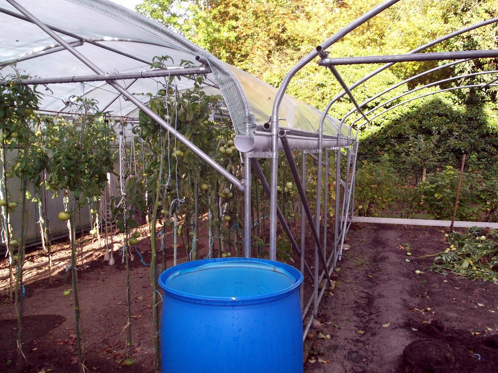 passion tomates r am nagement des serres pour 2013 tout en pieds droit et r cup ration de l. Black Bedroom Furniture Sets. Home Design Ideas