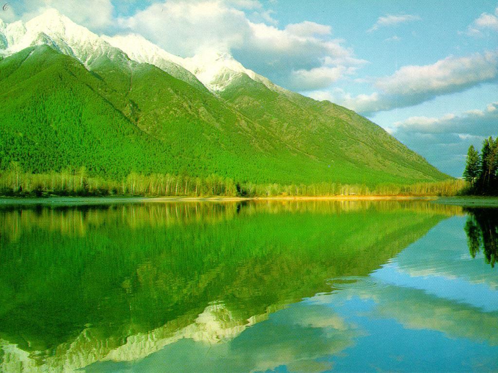mountain and the greenary - photo #30